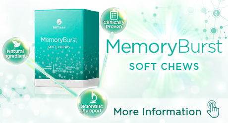 MemoryBurst_New_ENG